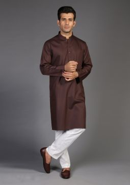 Basic Poly Viscose Chocolate Plum Classic Fit Kurta